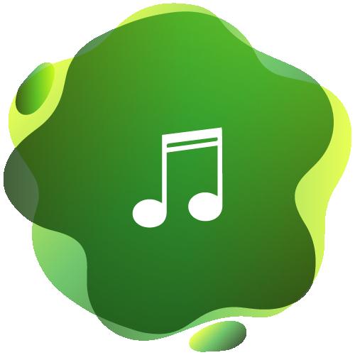 buy spotify plays intro